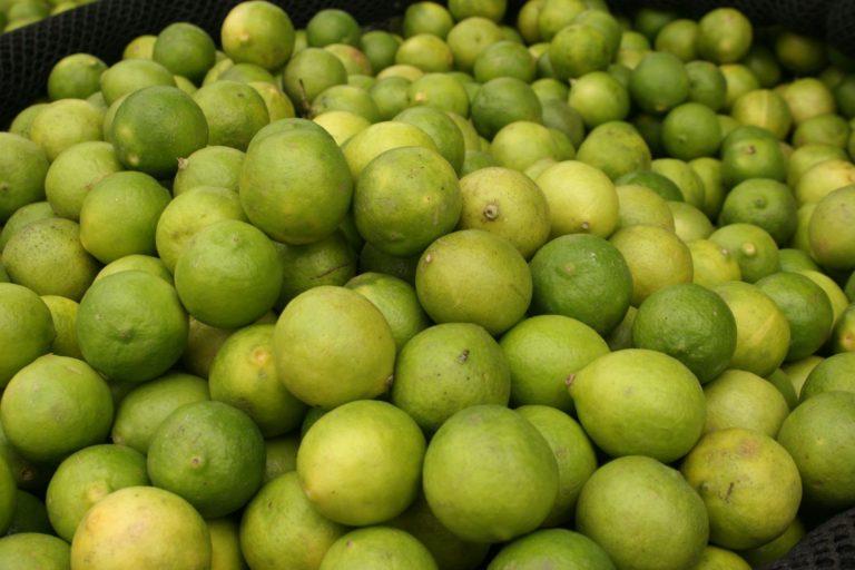 Kilos de limón peruano para curar a los marinos entregó en Lima San Martín a Cochrane en 1821